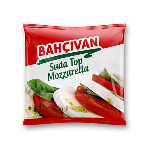 Bahçivan Suda Top Mozzarella 125gr nin resmi